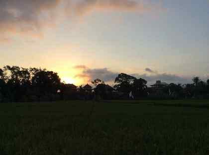 Bali8.jpg
